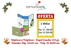dipticos y tirptico promocion en jpg